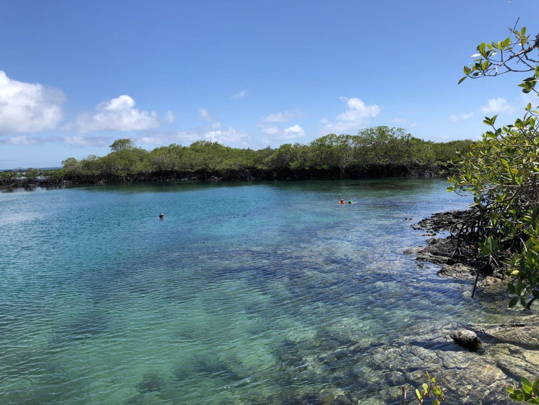 Playa Concha de Perla en Isabela, Galapagos